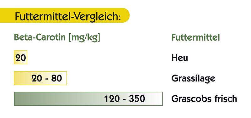 Vergleich der Futtermittel