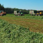 Einsammeln der Luzerne - Qualitätstrocknung Nordbayern eG