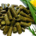 Pellets - Bioprodukte der QTN