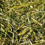 Qualitätstrocknung Nordbayern - Bio-Rohstoff