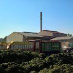 Qualitätstrocknung Nordbayern eG - Standort Wechingen