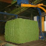 Produktion der Ballen in der Qualitätstrocknung Nordbayern eG