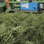 Verarbeitung bei der Qualitätstrocknung Nordbayern eG